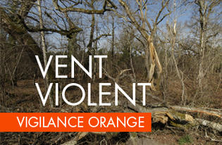 Vigilance orange pour vents violents